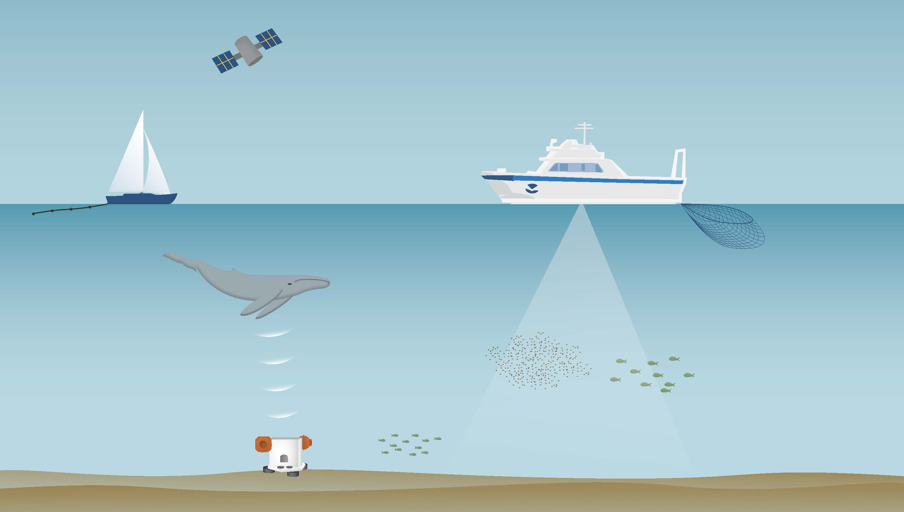 The ADEON data collection network of vessels, satellites, and ocean bottom landers